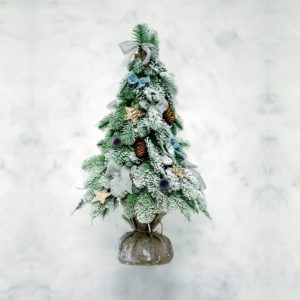 Albero di Natale light blue | Andrea Patrizi Flower Shop