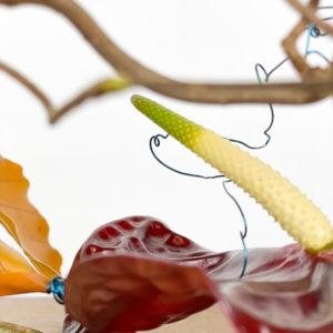 Moback Anthorium | Andrea Patrizi Flower Shop